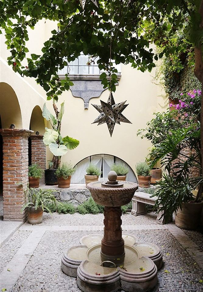 tree ground fountain botany Garden Courtyard water feature flower art plant yard sculpture statue stone