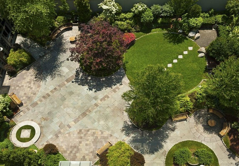 tree plant ecosystem Garden botany yard Courtyard landscape architect backyard sign lawn mansion screenshot botanical garden landscaping stone