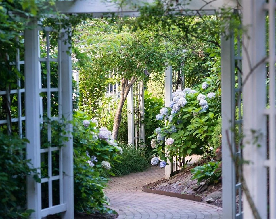 tree building Garden botany neighbourhood Courtyard house yard flower porch home backyard residential area outdoor structure cottage landscape architect plant