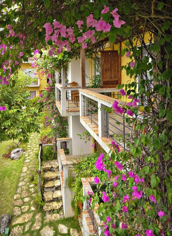 flower tree plant Garden flora yard botany backyard floristry pink cottage purple Courtyard outdoor structure walkway woodland shrub colorful