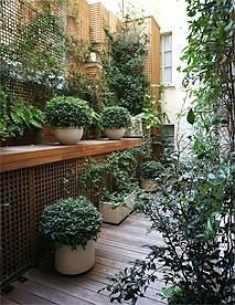 property building plant Courtyard Garden yard backyard outdoor structure landscape architect cottage landscaping stone