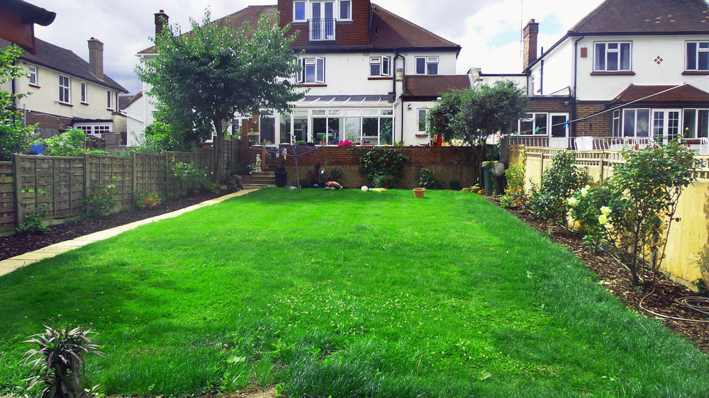 grass building house property lawn yard green walkway backyard residential area Garden residential neighbourhood home Courtyard shrub landscape architect cottage landscaping waterway grassy