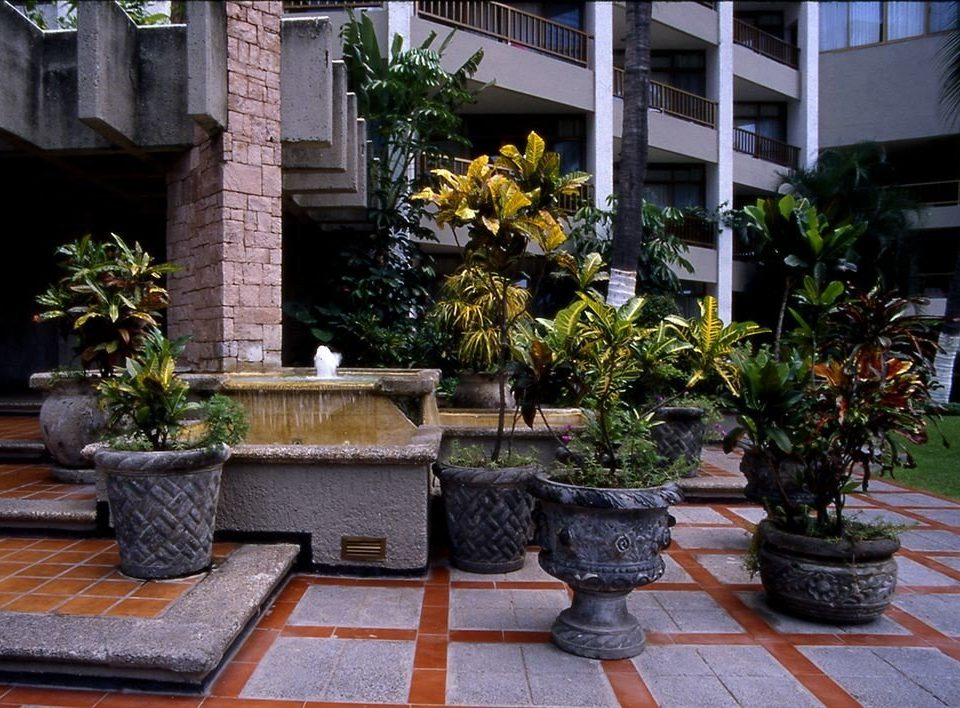 building ground plant Courtyard Garden home backyard yard outdoor structure houseplant water feature landscaping flower stone curb