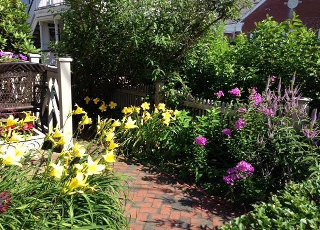 tree flower Garden plant yard flora bushes floristry backyard lawn Courtyard cottage landscape architect landscaping shrub surrounded stone