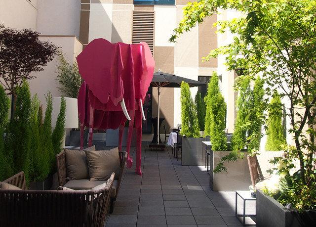 tree chair floristry flower Courtyard home backyard Garden plant