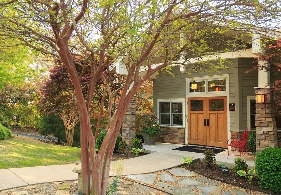 tree ground property home house yard Courtyard backyard residential area Garden cottage outdoor structure lawn plant stone
