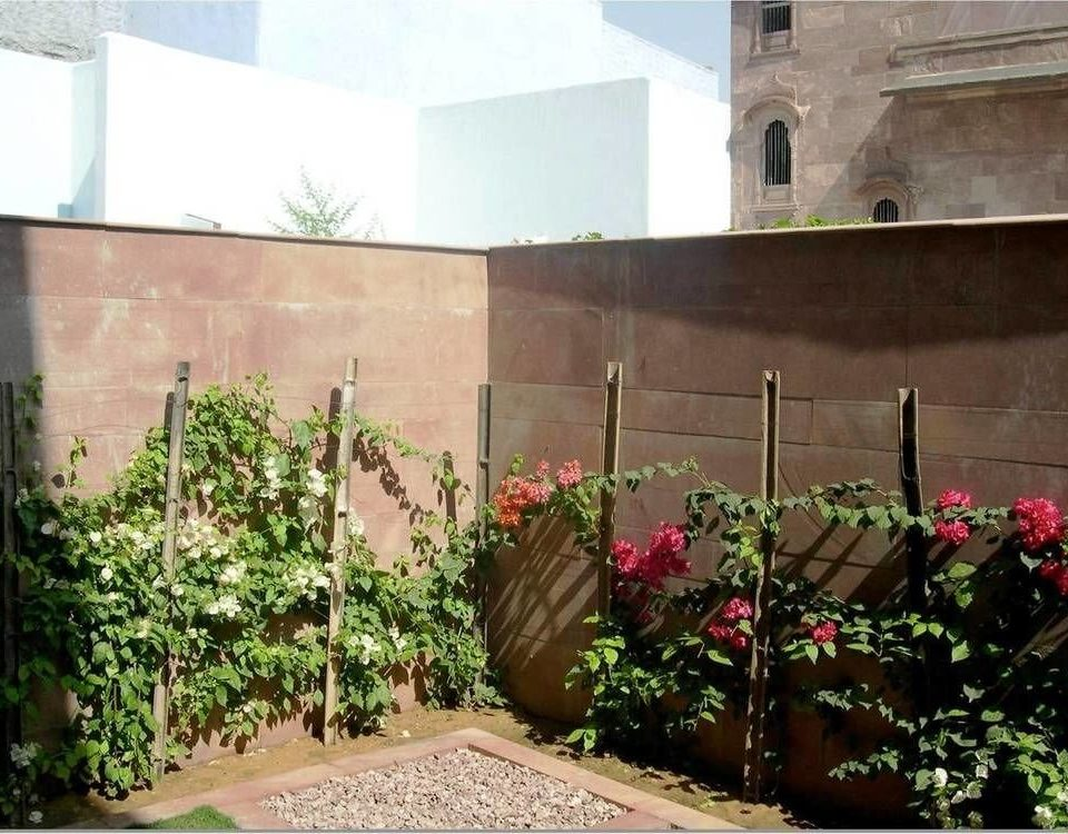 building flower plant property Courtyard hacienda Garden stone