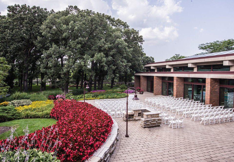 tree sky grass flower Garden Courtyard palace