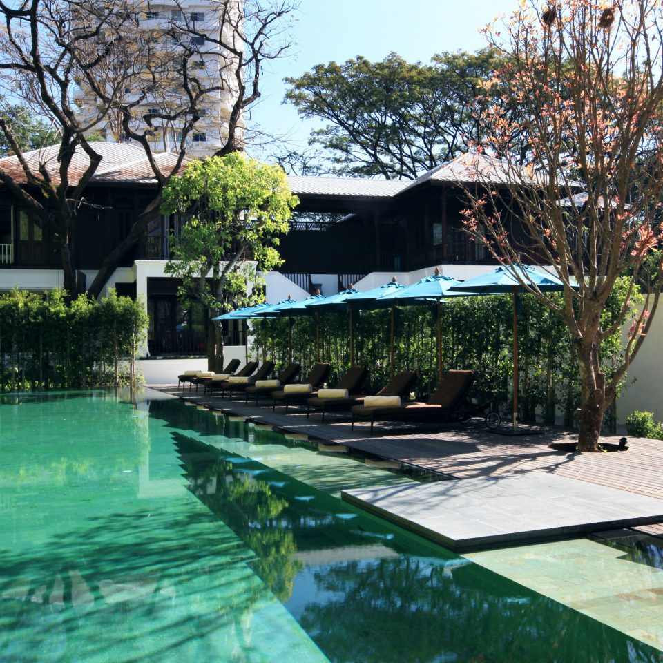 Garden Grounds Hip Modern Pool tree swimming pool property backyard reflecting pool Villa home Courtyard Resort landscape architect outdoor structure yard pond