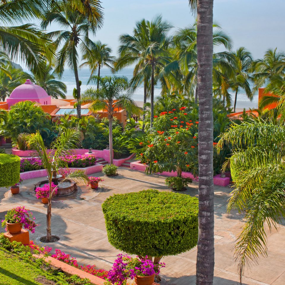 Grounds Hotels Island Romance tree sky palm Resort flora botany Garden flower plant arecales botanical garden palm family Courtyard yard lined