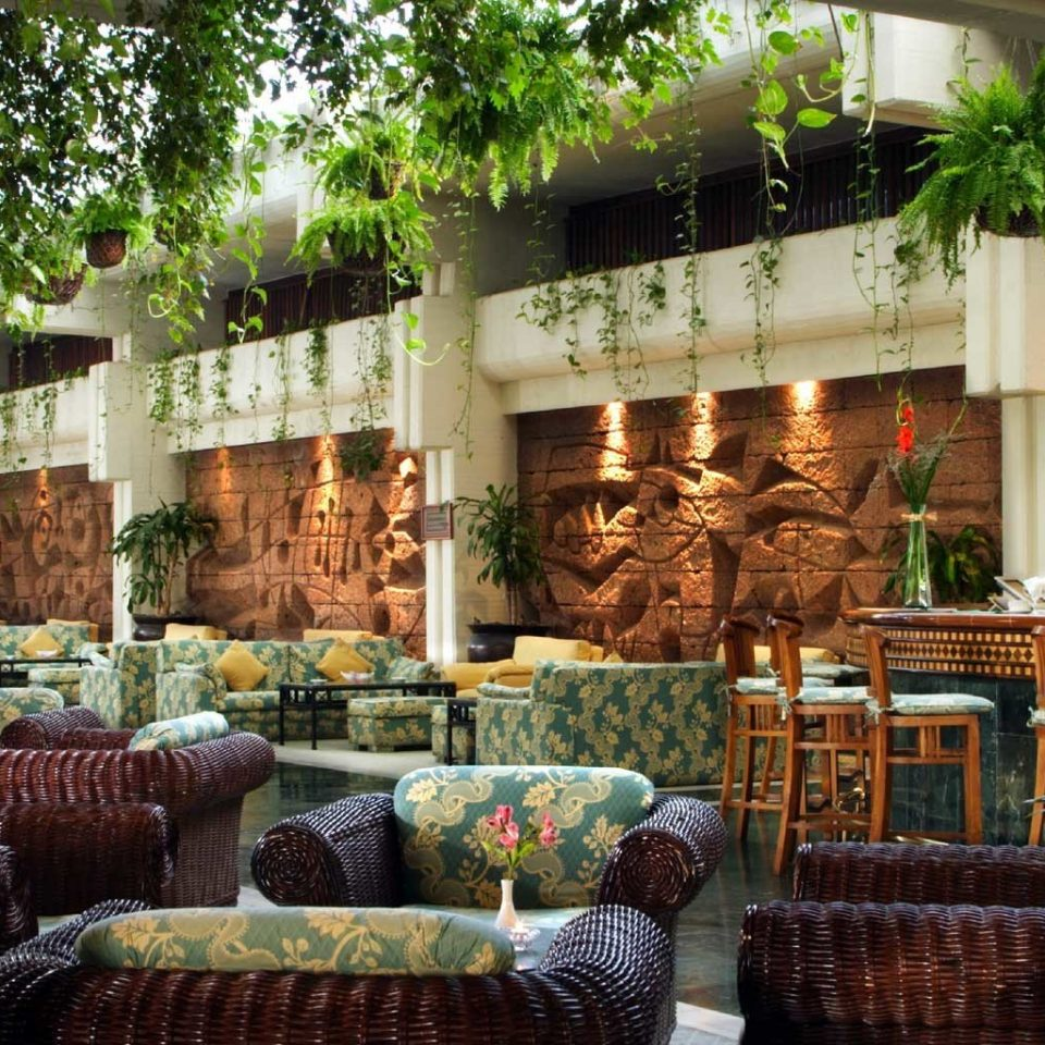 Hip Lobby Lounge Modern Tropical floristry Resort home Courtyard backyard Garden outdoor structure