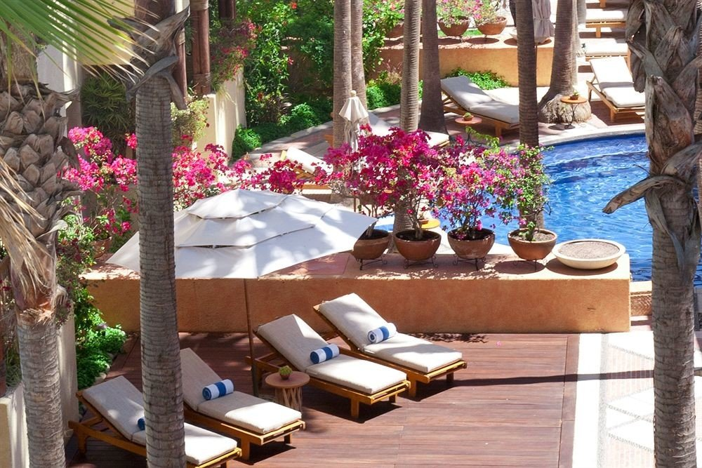 Hip Luxury Pool Romantic property backyard Courtyard home Resort Villa yard outdoor structure flower Garden cottage