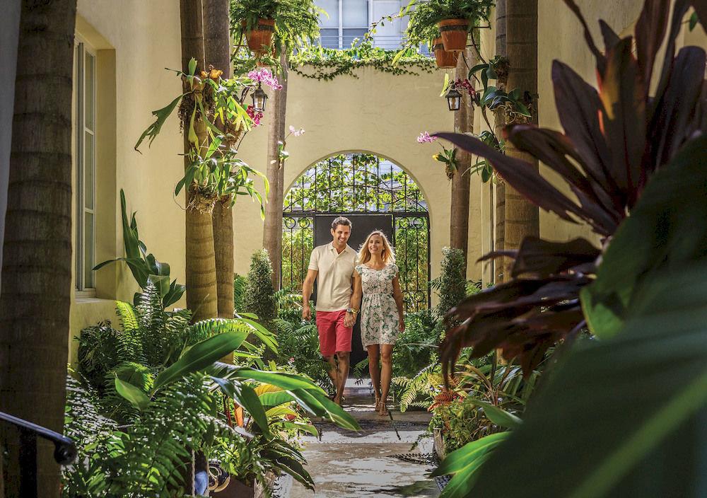 plant flora botany flower floristry Courtyard Garden Jungle mansion