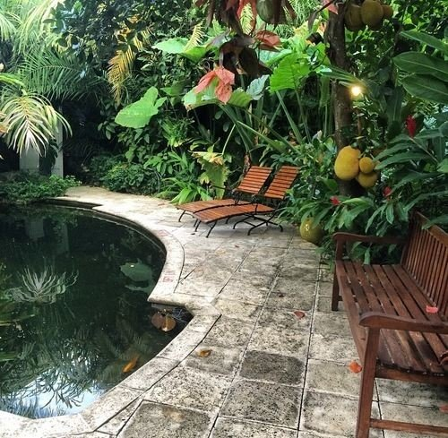 ground backyard plant yard Garden pond wooden swimming pool Courtyard walkway outdoor structure landscaping Patio Jungle stone surrounded