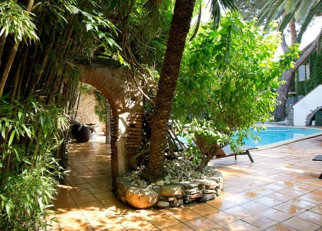 tree plant arecales Courtyard Garden Jungle backyard Resort walkway zoo water feature stone