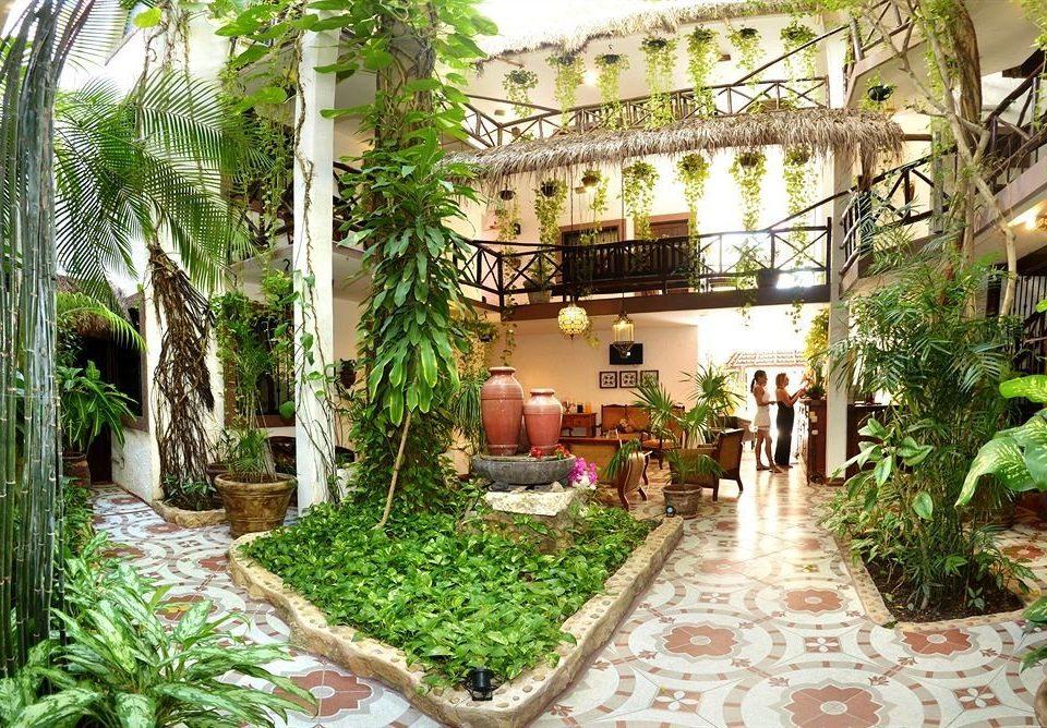property Resort Courtyard plant building hacienda Garden restaurant condominium Villa Jungle