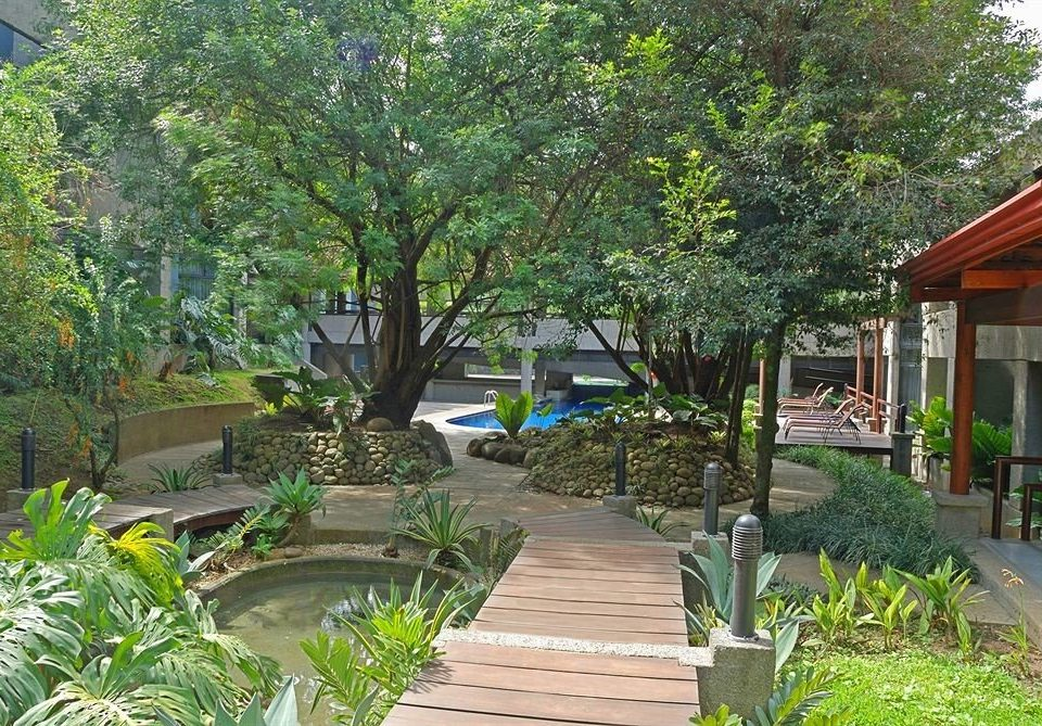 tree Resort Garden wooden walkway yard flower botanical garden backyard Courtyard Jungle plant
