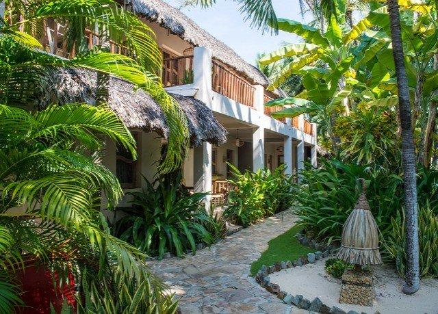 tree plant property Resort building palm arecales Villa Garden home Jungle Courtyard walkway eco hotel hacienda cottage backyard condominium surrounded