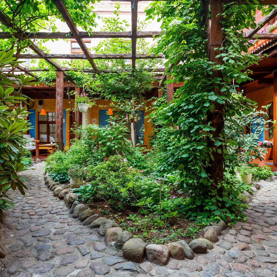 tree ground Garden house plant botany Courtyard Resort yard stone backyard path Jungle greenhouse cottage flower bushes sidewalk lined walkway