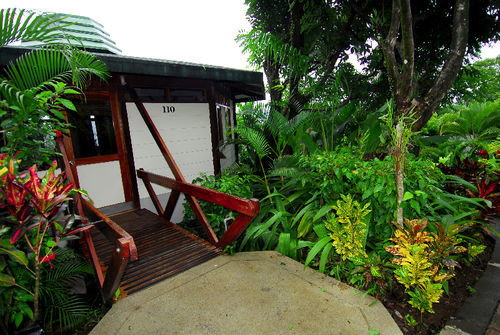 tree plant property Garden yard botany backyard house Resort cottage Courtyard Jungle flower Villa outdoor structure rainforest porch