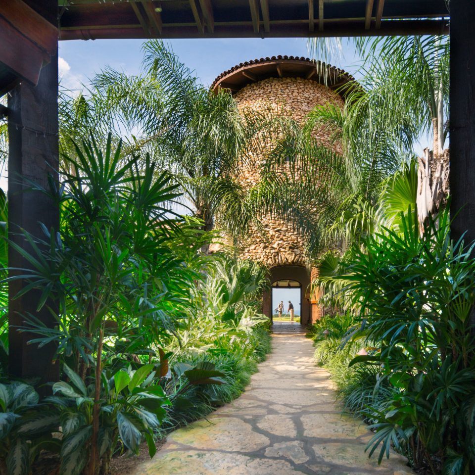 ground plant Resort Courtyard house home hacienda flower arecales restaurant Garden backyard Jungle Villa porch