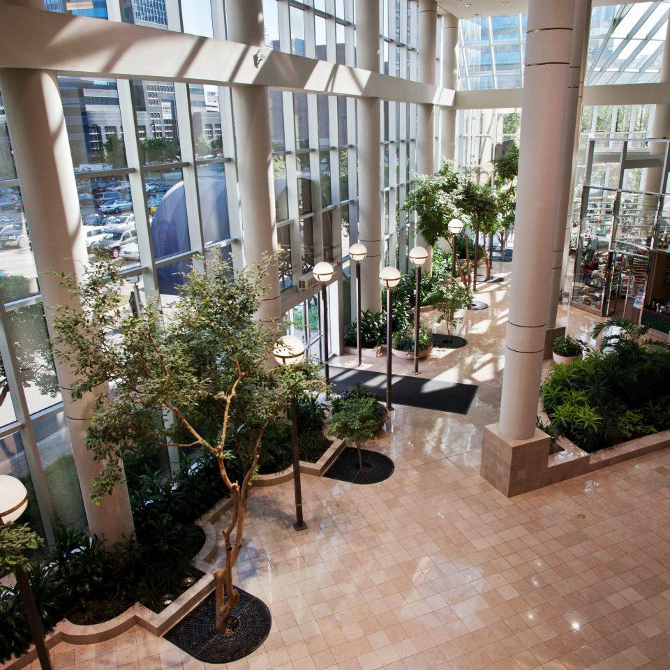 building property condominium Courtyard neighbourhood home plaza Lobby backyard outdoor structure Garden plant