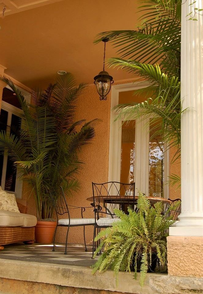 plant property building house home Courtyard lighting condominium Villa Lobby backyard living room hacienda palm mansion arecales porch Garden