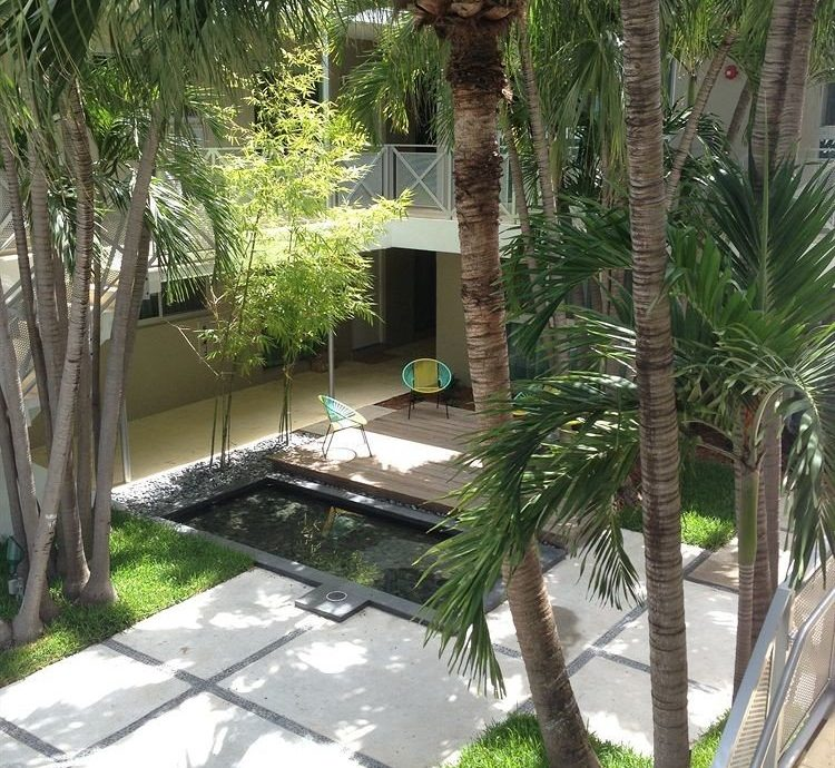 Luxury Pool tree property palm Courtyard Resort arecales home backyard yard swimming pool Garden Villa walkway condominium plant palm family landscape architect landscaping outdoor structure porch shade