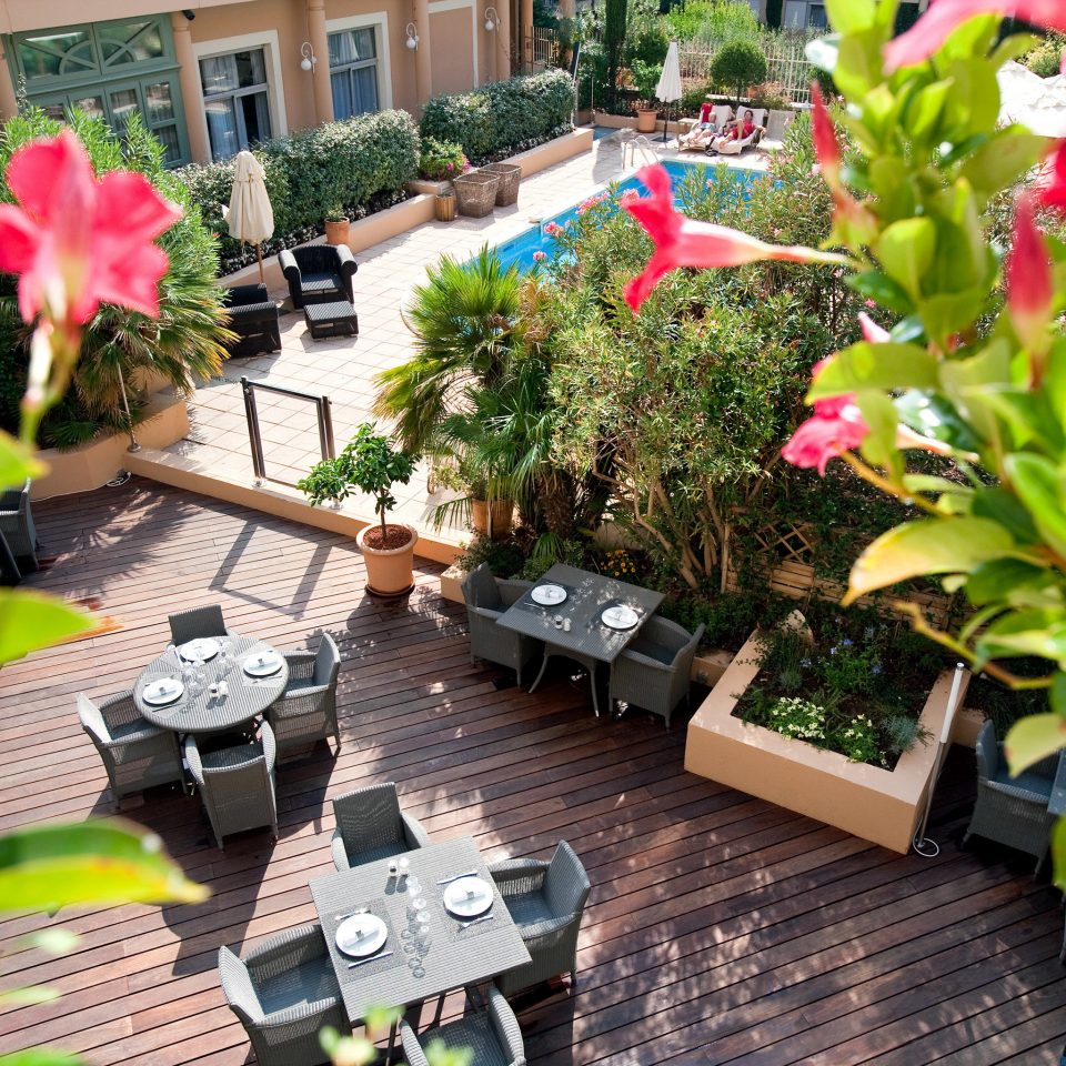 Outdoors Patio Play Pool Resort tree plant flower floristry flora yard Garden backyard flower arranging Courtyard floral design outdoor structure lawn