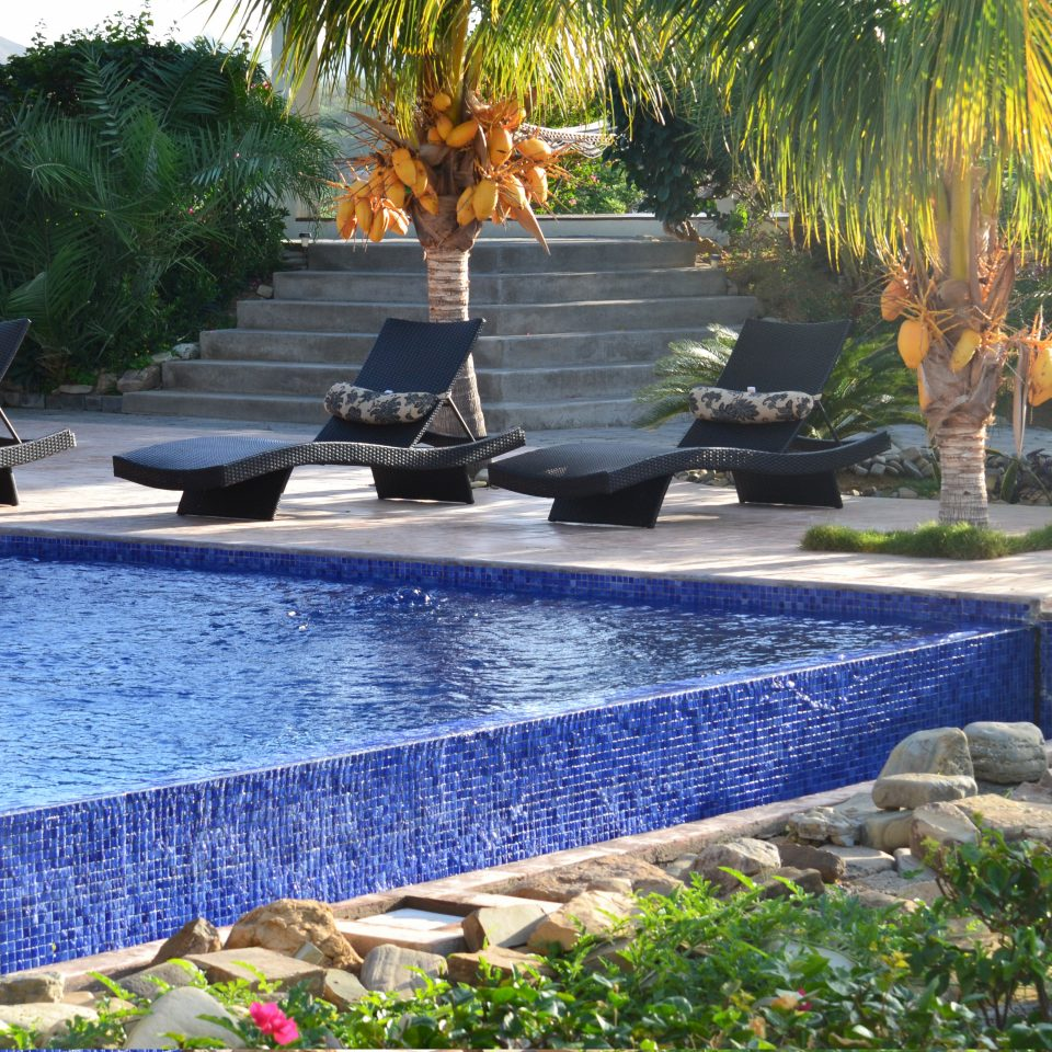 Outdoors Pool Wellness tree swimming pool property backyard reflecting pool water feature Courtyard Garden yard landscape architect pond landscaping outdoor structure Patio lawn Resort