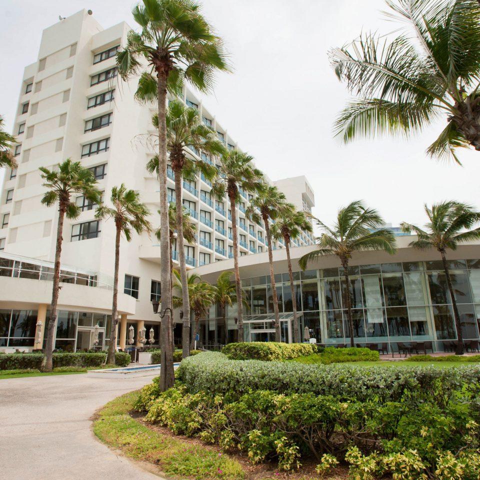 tree sky condominium plant property Resort neighbourhood residential area arecales home palm plaza Courtyard Garden