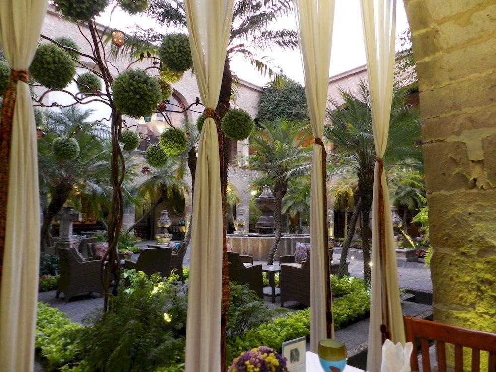 Courtyard tree flora botany Resort flower floristry arecales Garden restaurant porch plant home backyard outdoor structure