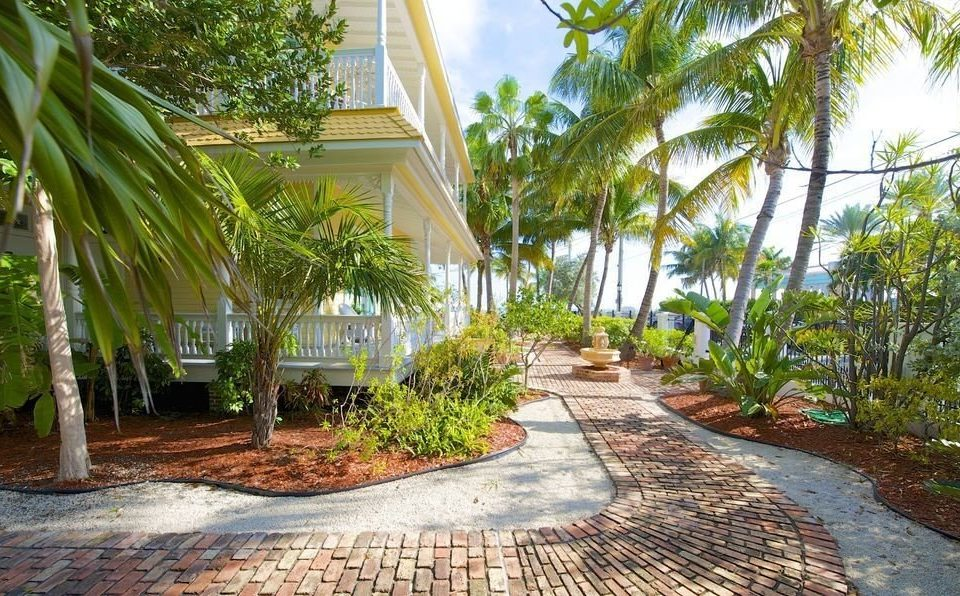 tree ground palm property walkway Resort Courtyard arecales Garden sidewalk backyard yard home plantation landscape architect outdoor structure landscaping plant shade lined