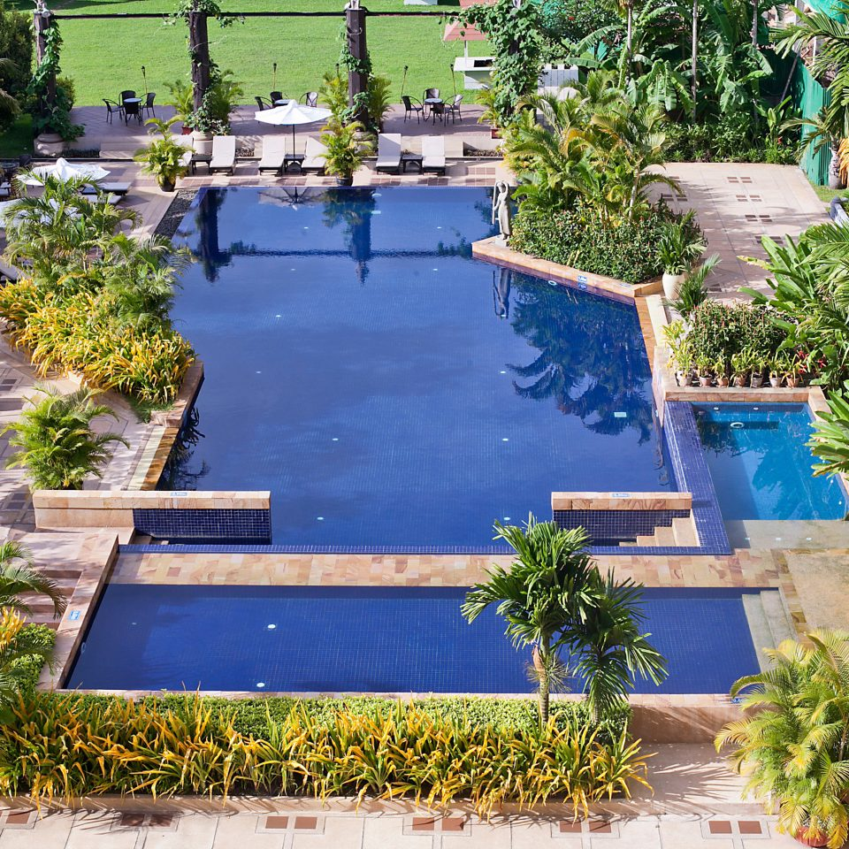 tree plant swimming pool Garden property walkway building backyard yard flower reflecting pool green pond landscape architect Resort Courtyard bushes lawn landscaping palm surrounded