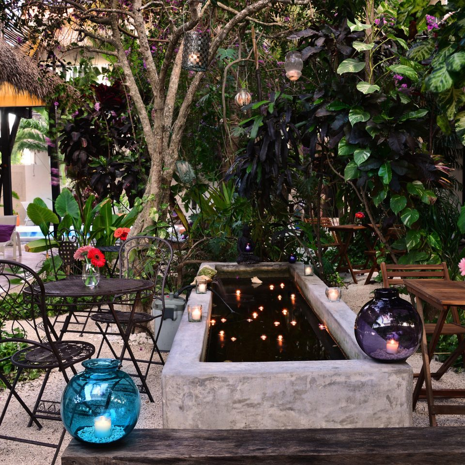 tree backyard yard Courtyard Garden home outdoor structure Resort flower restaurant plant