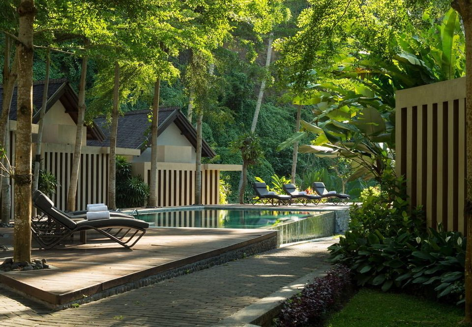tree backyard house home yard swimming pool Courtyard Garden walkway landscape architect Resort outdoor structure lawn landscaping porch stone
