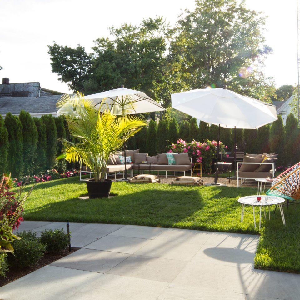 tree grass sky Garden backyard floristry flower yard lawn Courtyard landscape architect botanical garden Resort