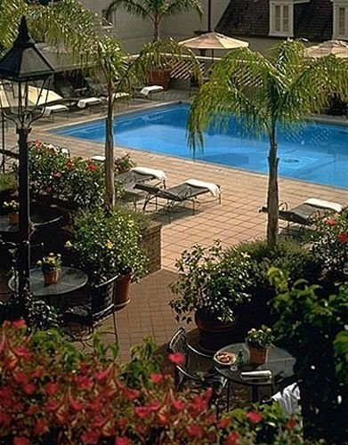 tree plant property building Resort swimming pool backyard Garden yard Courtyard palm shade