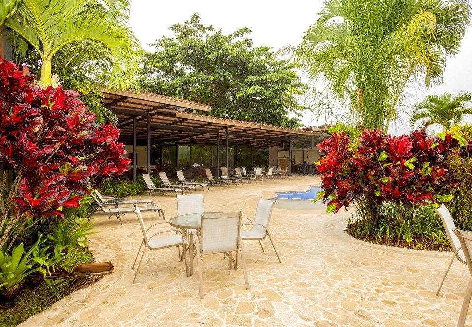 tree plant walkway flower floristry Resort Courtyard Garden backyard outdoor structure aisle yard hacienda restaurant Villa porch