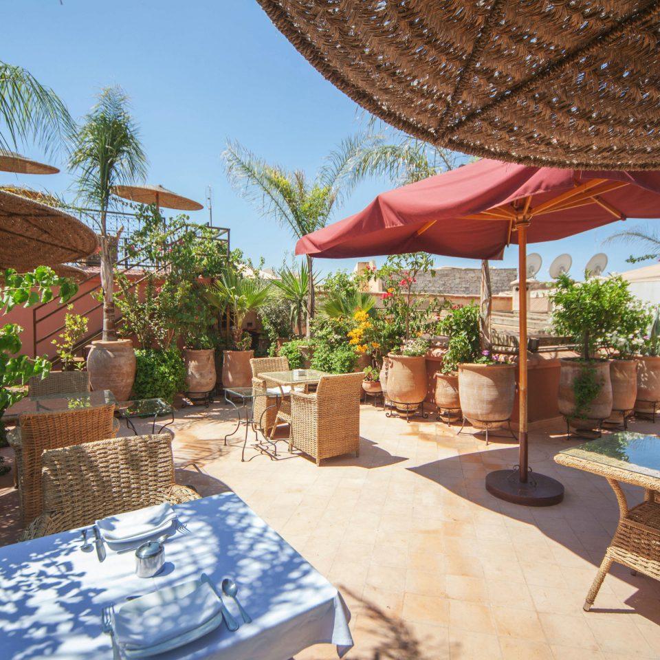 tree umbrella chair property Resort hacienda Villa backyard restaurant lawn Courtyard shade set Garden