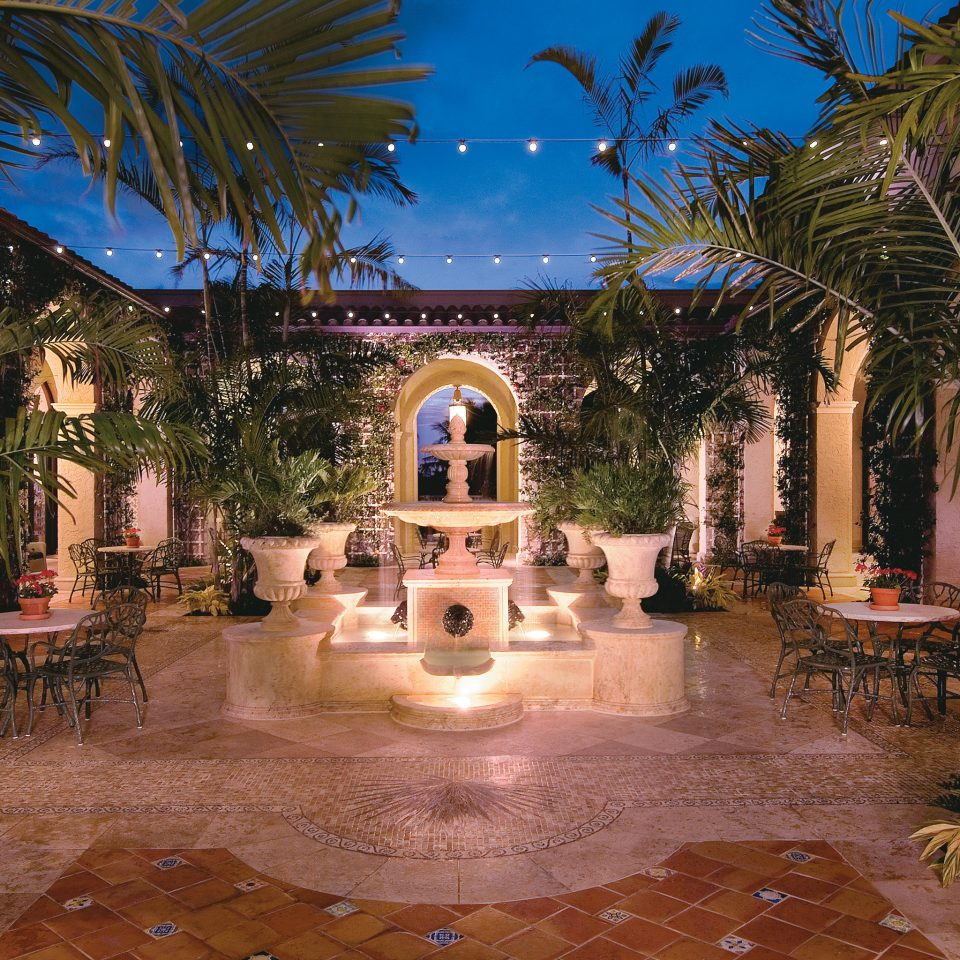 Courtyard tree Resort hacienda mansion swimming pool home arecales landscape lighting palace Villa backyard plant Garden surrounded