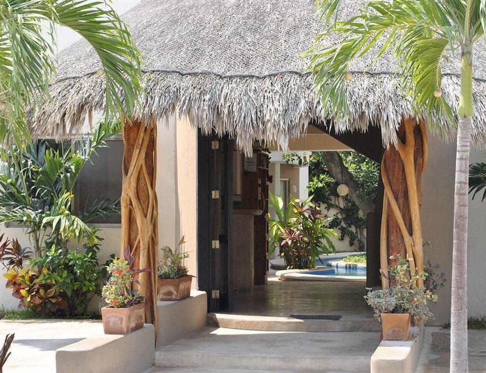 plant property Resort arecales Courtyard palm home restaurant Villa hacienda Garden flower outdoor structure cottage day