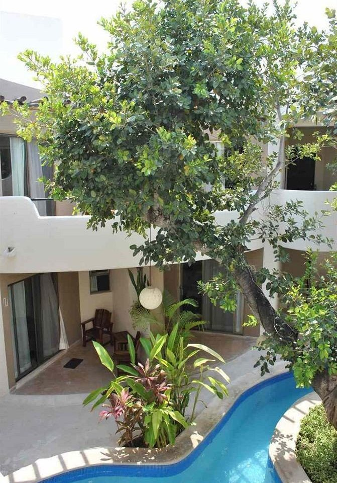 tree plant property Villa flower home cottage backyard Courtyard Garden yard Resort condominium shrub blue porch