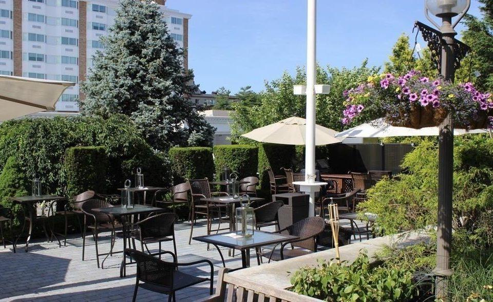 tree property chair Resort Courtyard Garden backyard Villa plaza condominium cottage outdoor structure yard restaurant porch