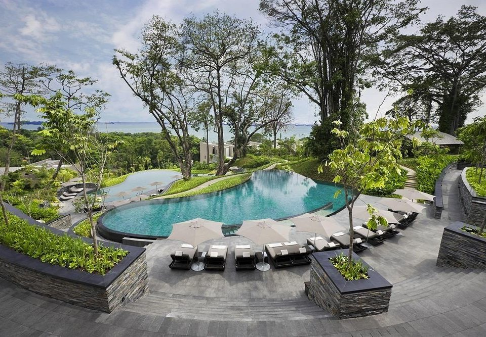 tree swimming pool leisure property backyard Resort Villa Garden mansion landscape architect Courtyard yard plant stone