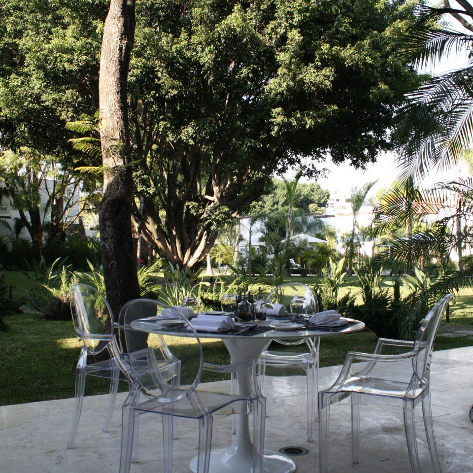 tree property Resort restaurant Courtyard backyard home Garden Villa park lawn hacienda plant set