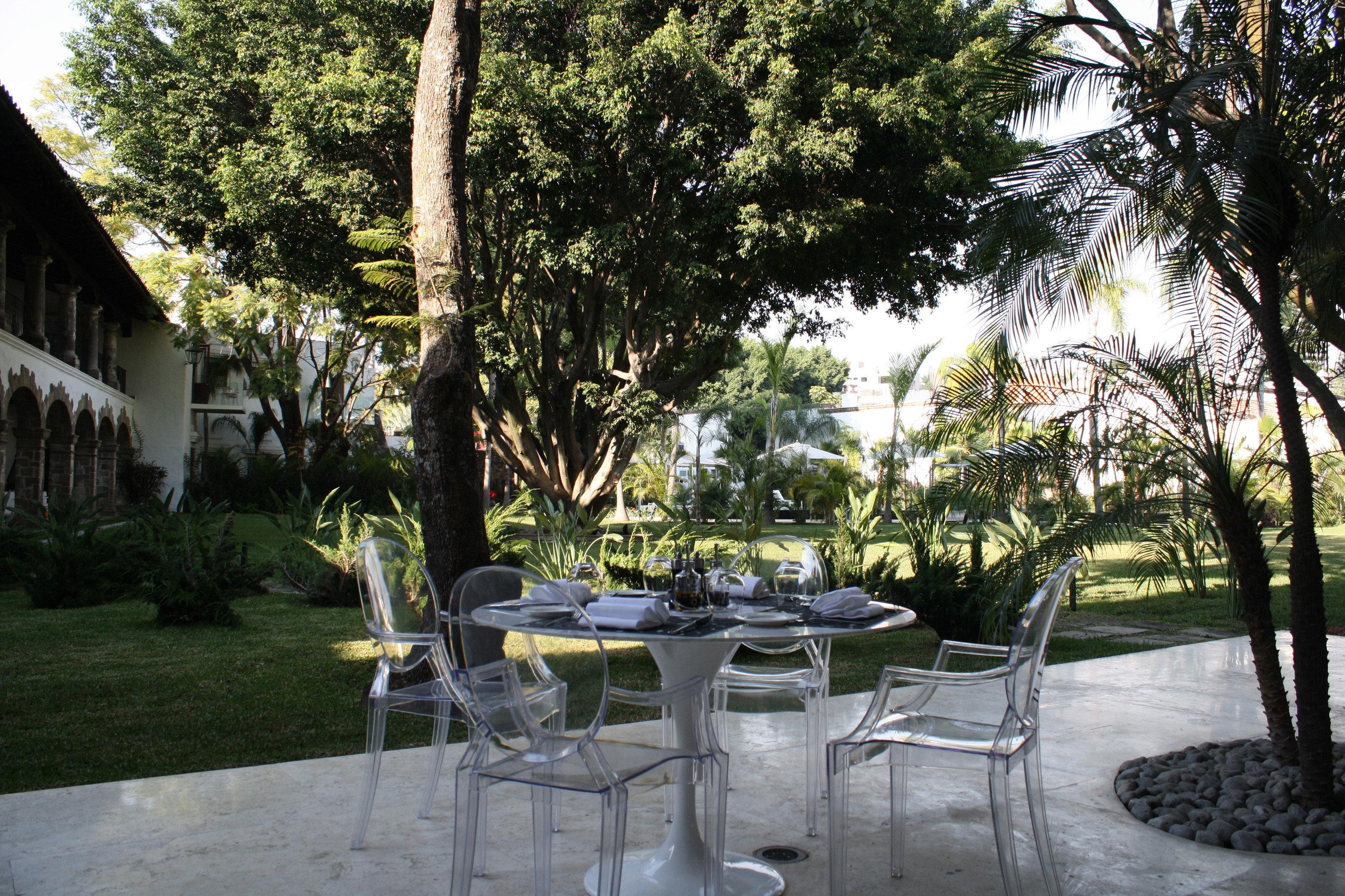 tree property Resort restaurant Courtyard backyard home Garden Villa park lawn hacienda plant set
