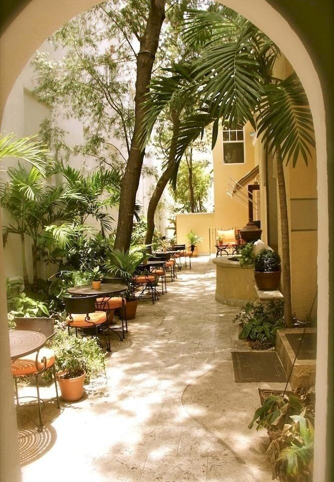 plant property Courtyard home house hacienda Villa backyard Resort arch condominium arecales yard Garden outdoor structure mansion porch