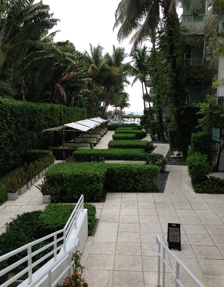 tree property walkway Courtyard Garden Resort landscape architect condominium plaza backyard yard Villa mansion plant stone lined