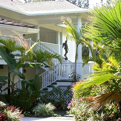 tree plant property building Garden palm home condominium Courtyard Resort backyard arecales yard swimming pool Villa outdoor structure landscaping lawn landscape architect bushes surrounded